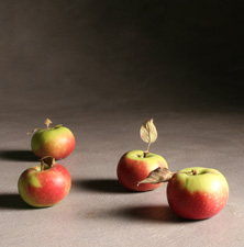 Lady Apples, Fall Fruit