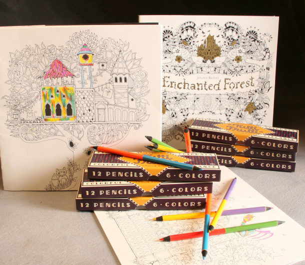 Coloring Book And Pencils Set