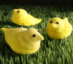 Easter Chick Trio (available for delivery April 15-20)