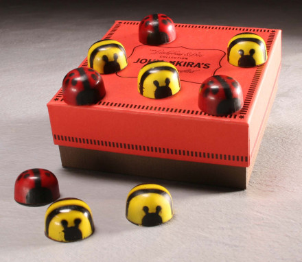 Chocolate Ladybugs and Bumblebee Box